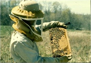 Beekeeper Mentoring with Joli & Cecil @ Joli & Cecil's Home | Spring Hill | Kansas | United States